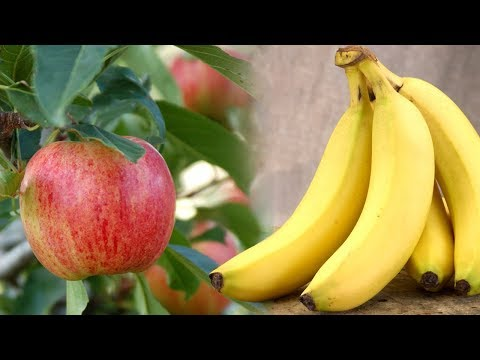 Fruits For Eat Freely To Cure Diabetes