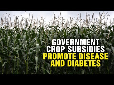 Government crop SUBSIDIES promote DISEASE and diabetes