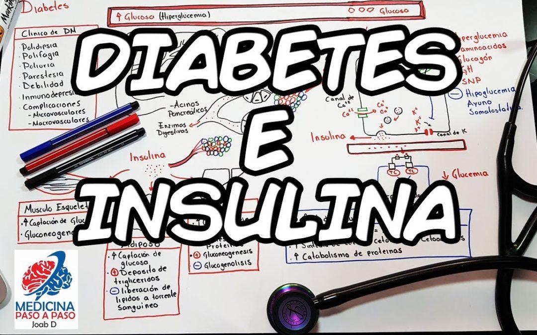 Fisiología: Diabetes e Insulina. Generalidades