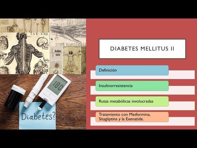 Diabetes Mellitus tipo 2 Explicación breve, fisiopatología y tratamiento