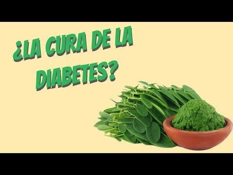 ¿La moringa cura la diabetes?: mitos y realidades
