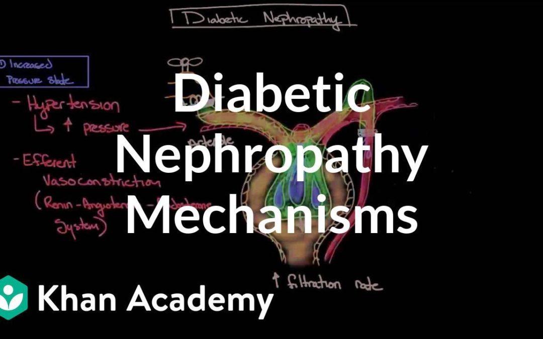 Diabetic nephropathy – Mechanisms   Endocrine system diseases   NCLEX-RN   Khan Academy