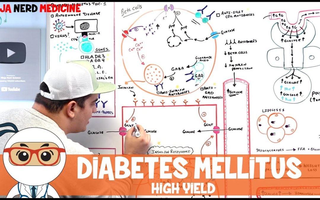 Diabetes Mellitus: Type I & Type II | Pathophysiology, Diagnostics, & Treatment | High Yield