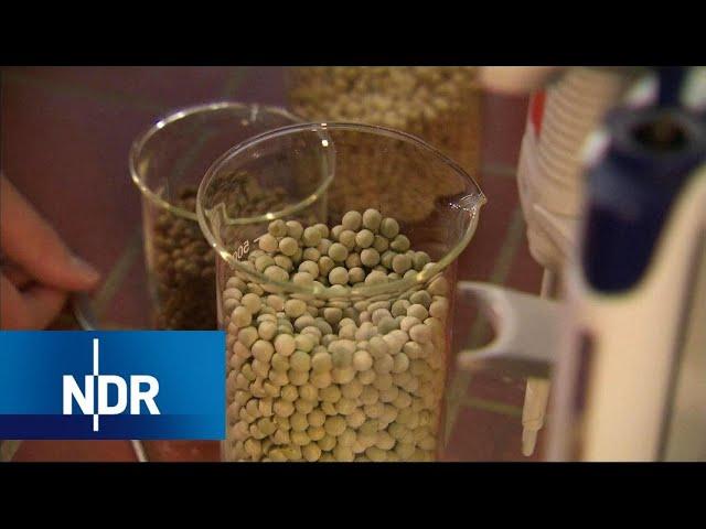 Diabetes Typ 2: Eiweiß senkt Blutzucker | Visite | NDR