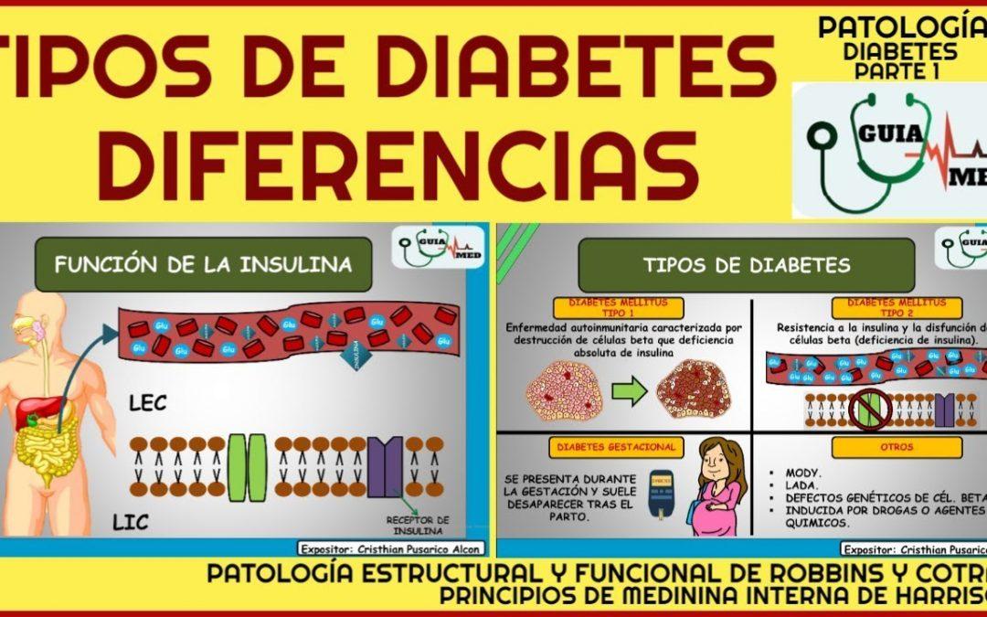 TIPOS DE DIABETES Y SUS DIFERENCIAS | GuiaMed