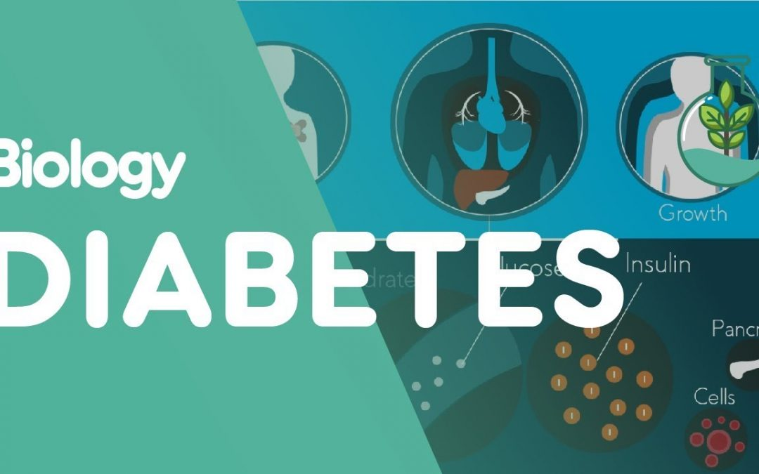 What is Diabetes? | Physiology | Biology | FuseSchool