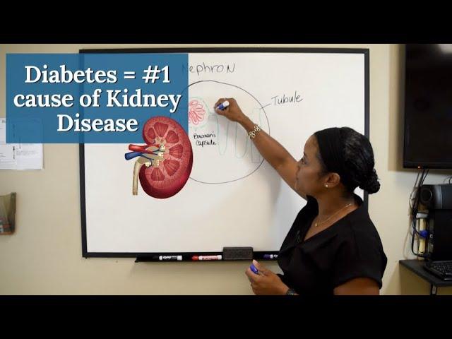 Diabetes is the Number 1 cause of Chronic Kidney Disease [Diabetic Kidney Disease] – CKD series #2
